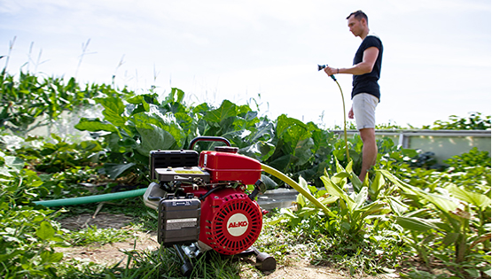 Spara vatten i trädgården |Hitta den bästa pumpen för ändamålet
