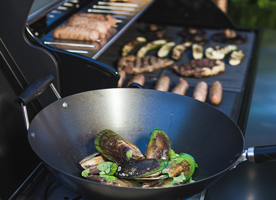 BBQ | AL-KO Masport Grill många grillflater