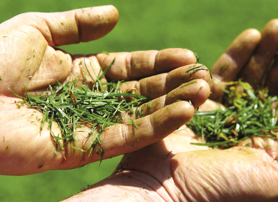 Gräsklippare | AL-KO MaxAirflow Technology inga gröna fingrar